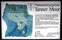 Tannermoor